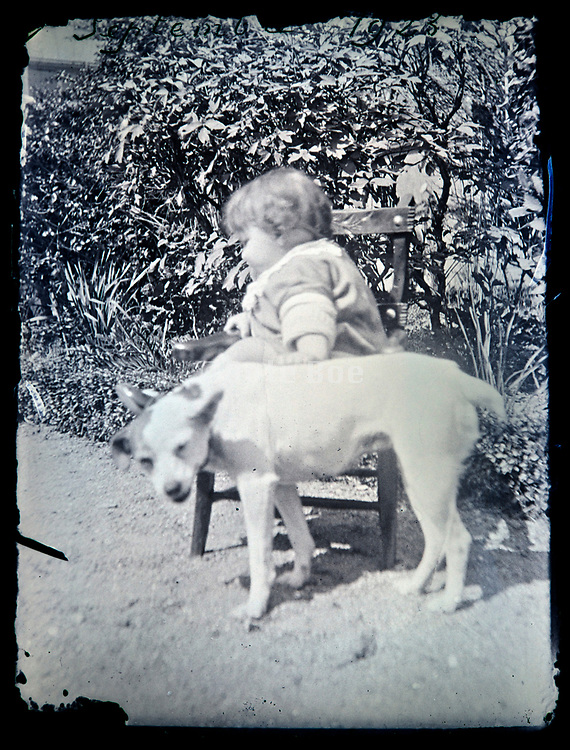 little toddler with pet fox terrier dog in the garden France 1920s