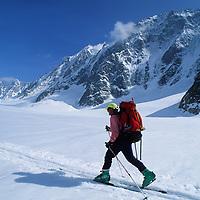 Haute Route skier (MR) on Argentiere Glacier, enroute from Chamonix to Zermatt.