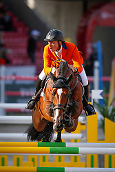 Greve Willem (NED) - Carambole <br /> PSI FEI European Championships Jumping - Herning 2013<br /> © Dirk Caremans