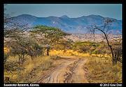 Samburu Trail<br /> Samburu National Reserve, Kenya<br /> September 2012