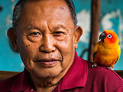 14 DECEMBER 2015 - BANGKOK, THAILAND:  A man with his pet parrot in Bang Chak Market. The market closes permanently on Dec 31, 2015. The Bang Chak Market serves the community around Sois 91-97 on Sukhumvit Road in the Bangkok suburbs. About half of the market has been torn down. Bangkok city authorities put up notices in late November that the market would be closed by January 1, 2016 and redevelopment would start shortly after that. Market vendors said condominiums are being built on the land.      PHOTO BY JACK KURTZ