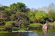 65021-03511 Japanese Gardens in spring, Missouri Botanical Gardens, St Louis, MO