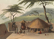 A Boosh Wannah hut. hand colored plate from the collection of  ' African scenery and animals ' by Daniell, Samuel, 1775-1811 and Daniell, William, 1769-1837 published 1804