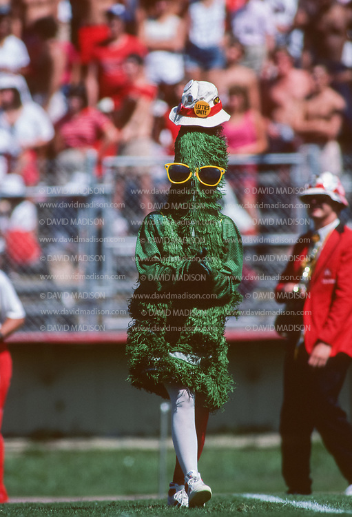 COLLEGE FOOTBALL:  The Tree performs with the Leland Stanford Junior Marching Band during a Stanford football game played in September 1984 at Stanford Stadium in Palo Alto, California.  Photograph by David Madison.