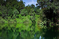 Lush green jungle reflects on the calm waters of the Batang river on the way to Nanga Sumpa Longhouse, Sarawak.