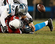 CHARLOTTE, NC - JAN 24:  Defensive end Mario Addison #97 of the Carolina Panthers causes quarterback Carson Palmer #3 of the Arizona Cardinals to fumble the ball during the NFC Championship game at Bank of America Stadium on January 24, 2016 in Charlotte, North Carolina.