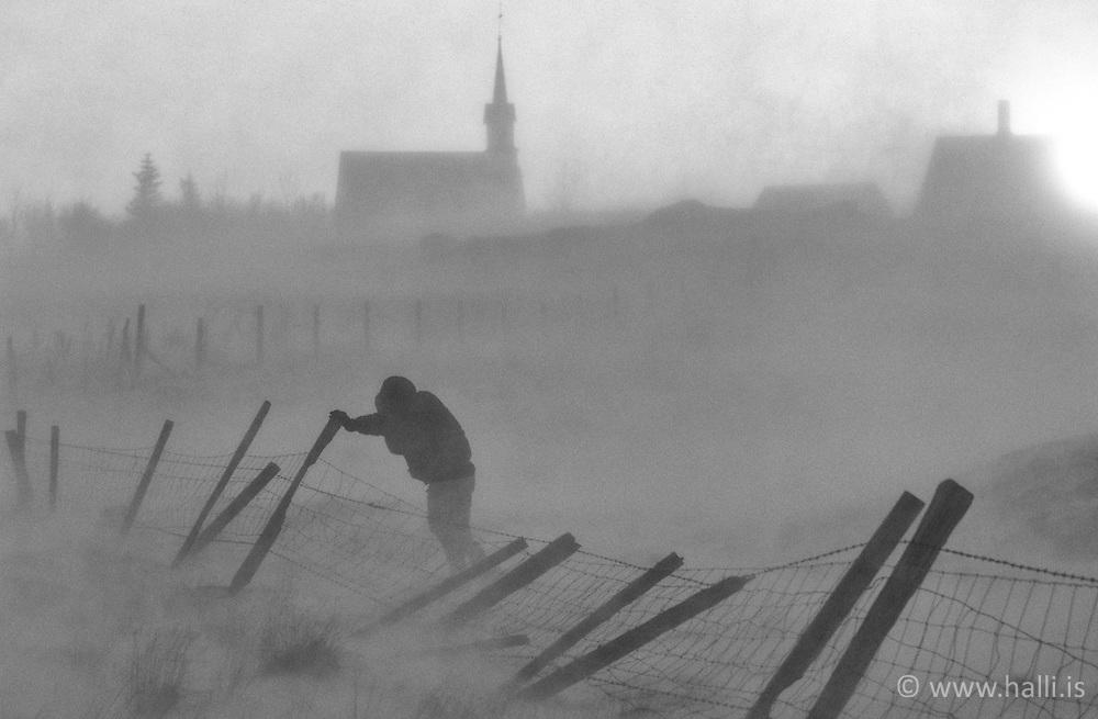 Man raising up a fench in heavy snowstorm at Kotstrandakirkja, south Iceland - Maður að reisa við girðingu við Kotstrandakirkju