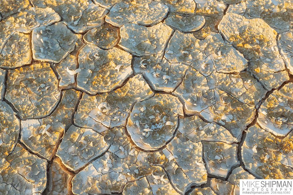 Cracked mud in the golden light of sunrise, Alvord Desert, Oregon