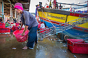30 OCTOBER 2012 - PATTANI, PATTANI, THAILAND: A Burmese worker unloads a fishing trawler while Thai Muslim workers sort and grade fish in the port of Pattani, province of Pattani, Thailand. Thailand's fishing industry relies on immigrant workers, mostly from Myanmar but also Laos and Cambodia. There have been allegations of worker abuse, including charges that workers are held in slave labor like conditions. There are hundreds of thousands of immigrant workers in the Thai fishing industry. Most are from Myanmar (Burma) but there are also Cambodian and Laotian workers in the industry.    PHOTO BY JACK KURTZ