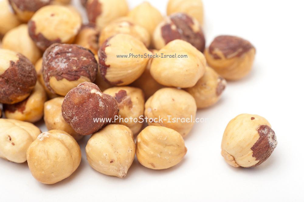 Shelled Hazel Nuts (Corylus avellana) On white Background