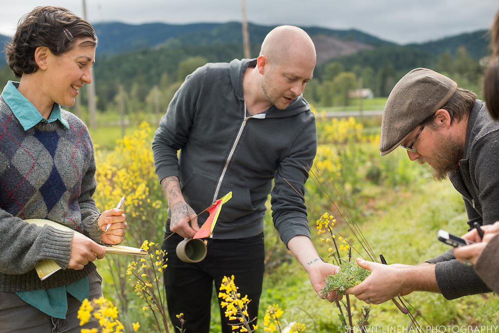 Breeder Sarah Kleeger (left), Chef Timothy Wastell (center), Breeder Andrew Still (right) performing selections