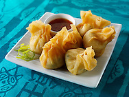 Oriental dim sum with chicken &vegetables with a hoisin dipping sauce