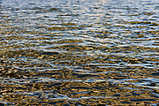 Color photo of water ripples