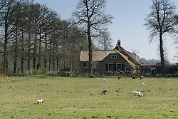 Boekesteijn