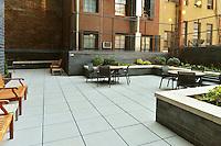 Garden at 57 Reade Street