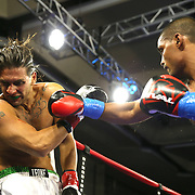 Bruce Lutchmedial of Toronto, Canada (R) punches Christopher Salerno of West Palm Beach, Florida during a Nelsons Promotions boxing match at the Boca Raton Resort  and Club on Friday, May 26, 2017 in Boca Raton, Florida. Lutchmedial went on to win the fight.  (Alex Menendez via AP)