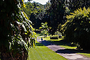 The Tropical Agricultural Research Station in Mayaguez Puerto Rico
