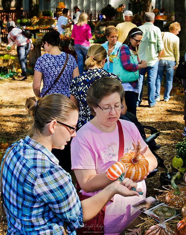 The handblown glass pumpkins at the 2012 Wheaton Arts Fine Craft Fair drew crowds all day long.