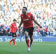 Cardiff City v Fulham 080314