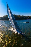 Sailboats, Sydney Harbor, Sydney, New South Wales, Australia