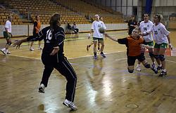 Goalkeeper of Olimpija Branka Zec vs Vanesa Miler of Brezice at  handball game between women team RK Olimpija vs ZRK Brezice at 1st round of National Championship, on September 13, 2008, in Arena Tivoli, Ljubljana, Slovenija. Olimpija won 41:17. (Photo by Vid Ponikvar / Sportal Images)