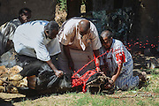 A butcher and few relatives of the groom during the slaughtering process, this cow's meat will feed all the wedding guests