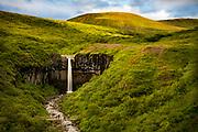 Svartifoss waterfall, Skaftafell, Iceland, in Vatnajökull National Park.
