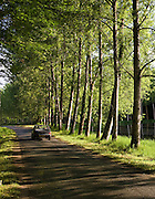 French saloon car in tree lined avenue near St Leon sur Vezere in the Perigord Noir region of France