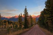 Fall colors near Condon Montana.