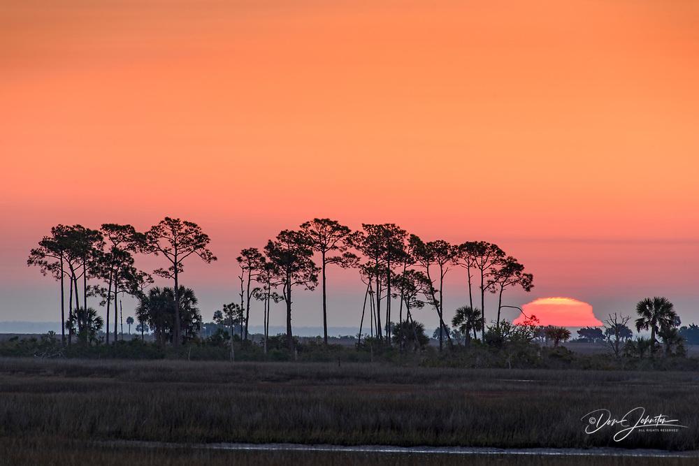 Snrise over the salt marshesu, St. Marks NWR, Florida, USA