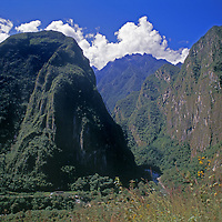 Rio Huabayacu drains cloud forest en route to distant Amazon Basin.