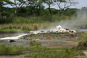 Semuliki National Park in western Uganda Sulphur reach Sempaya hot springs