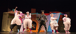 """© Licensed to London News Pictures. 05/08/2015. London, UK. L-R: Taofique Folarin, Daniel Buckley, Simon Webbe, Alison Jiear and Leanne Jones. West End premiere of the children's story """"The 3 Little Pigs"""" at the Palace Theatre starring Simon Webbe as Wolf, Alison Jiear as Mother, Leanne Jones as Bee, Taofique Folarin as Bar and Daniel Buckley as Q. The show runs from 5 August to 6 September 2015. Photo credit: Bettina Strenske/LNP"""