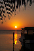 Belize, Central America - silhouette of palm frond in front of sunset and small fishing boat in Caye Caulker.