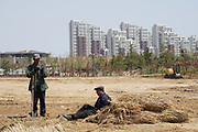 New construction and landscaping in progress. Rizhao construction company, urban planning, Shandong, China