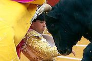V. 13. Valencia, 18/03/2006. El novillero, Andrés Gonzalez, recibe a puerta gayola a su primer astado durante la novillada con picadores que ha tenido lugar esta tarde en el coso valenciano con motivo de la fiesta fallera. EFE/Kai Försterling.