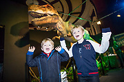 NO FEE PICTURES<br /> 17/12/17 Conor Mannix age 5 and brother Alan 7, Castleknock pictured at the prehistoric preview and official opening of Dinosaurs Around The World now open at the the Ambassador Theatre  for a limited time only. Embark on a globetrotting expedition around the world to discover the Age of Reptiles! With advanced animatronics, a multi-layered narrative, fossils, authentic casts, cutting-edge research and immersive design elements you'll experience the Age of Reptiles as it comes to life!  Dinosaurs Around the World is open daily to the public from 10 a.m. with last entry at 6pm for a limited time only. Tickets available from Ticketmaster.ie and from the Ambassador Theatre Box Office now. Visit www.mcd.ie for more. Pictures: Arthur Carron