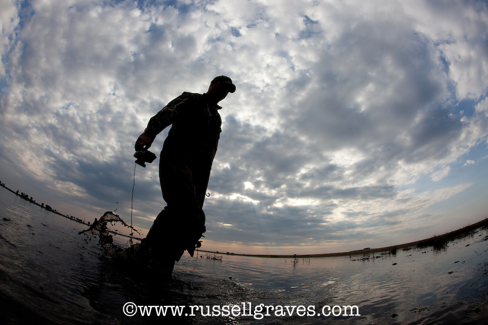 HUNTER COLLECTING DECOYS FROM A DUCK MARSH