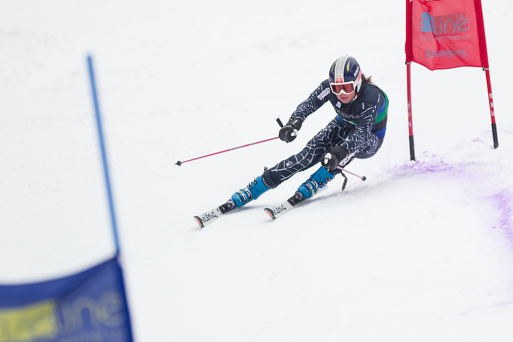 Christopher McKenna of Middlebury College, skis during the second run of the men's giant slalom at Jiminy Peak on February 15, 2014 in Hancock, MA. (Dustin Satloff/EISA)