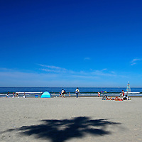 USA, California, La Jolla. La Jolla Shores Beach, San Diego, California.