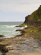 Cove, waves and kelp flow just to the west of Curio Bay, South Island, New Zealand