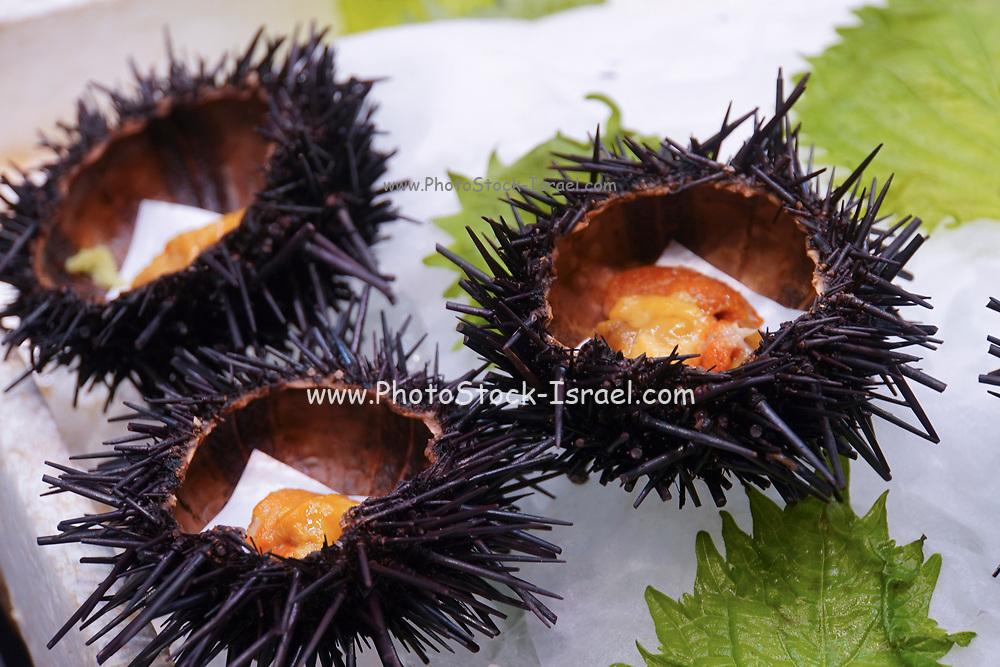 Japanese food. Sea Urchins. Photographed in Osaka Food Market, Osaka, Japan