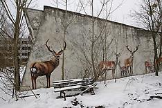Ukraine - The Deserted Town Of Pripyat Near Chernobyl - 22 Dec 2016