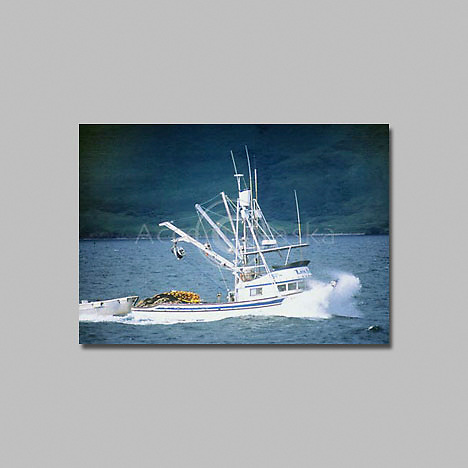 Alaska Koadiak, Salmon seiner fishing boat.