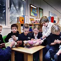 6Nederland, Amsterdam , 25 november 2013.<br /> Britse school: Op dinsdag 19 november ca 10.00 uur biedt een delegatie van ongeveer 11 kinderen (7 – 11 jaar oud) van de Britse School van Amsterdam een cheque aan Kinderstad aan. De kinderen hebben het geld bij elkaar verzameld door een 'taartjes verkoop' op hun school. Het geld zal worden besteed aan poppen die worden gebruikt ter voorbereiding van behandelingen bij patiëntjes. Deze poppen helpen bij de ziektebeleving en -verwerking en het reduceren van angst.<br /> Foto:Jean-Pierre Jans