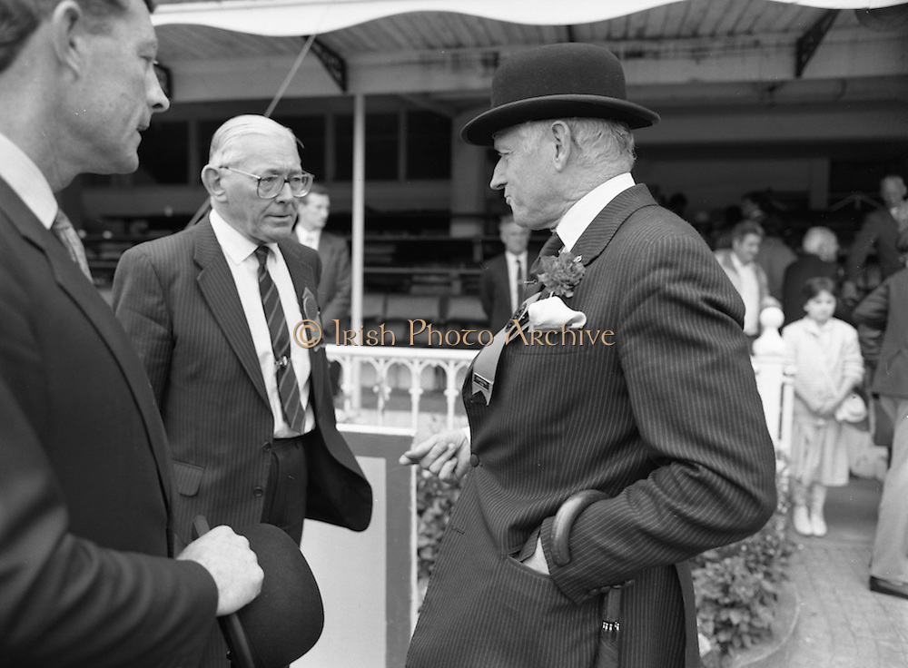 08/08/1987<br /> 08/08/1987<br /> 08 August 1987<br /> RDS Horse Show, Ballsbridge, Dublin.