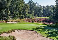LEUSDEN  -  zoeken naar de bal, Tee hole 2, par 3, Golfclub de Hoge Kleij  COPYRIGHT KOEN SUYK