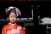 Portarit of a young girl in kimono as she celebrates her Shiji-go-san festival. Meiji Shrine, Harajuku, Tokyo, Japan. November 22nd 2008. Shiji-go-san matsuri or the 7-5-3 festival celebrates girls who have reached the age of 3 and 7 and boys who are aged 5. The chidren dress up in traditional kimono and are blessed at a shrine.