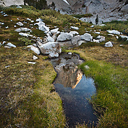 This image was taken in Hoover Wilderness outside of Bridgeport, CA. Most photographers would have shot the whole monolith (Slide Mountain elev. 11084) I wanted this one to be different by seeing the summit's reflection in the foreground instead.