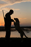 Silhouette of hunter and retriever against a sunset